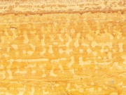 Ita Gold (Antique)